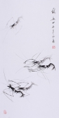 郭岚三尺花鸟画作品《虾趣》