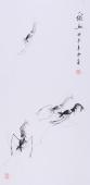 白石艺术研究会郭岚三尺竖幅国画《虾趣》