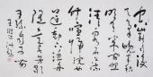 书画家协会副主席王洪锡 四尺草书《空山新雨后》