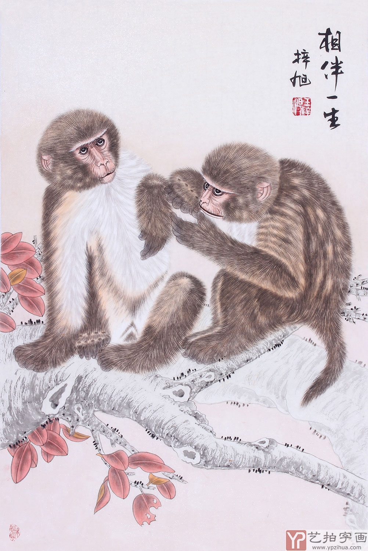 毛茸茸的毛黄中有白,白中泛光,这幅猴子把动物可爱的一面刻画的极其入