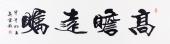 安徽书法名家高云彩四尺对开书法作品《高瞻远瞩》