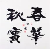 安徽书法名家高云彩书法作品《春华秋实》