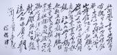 杨俊伟八尺书法作品《沁园春 雪》