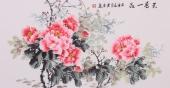 安徽美协会员云志三尺牡丹《天香一品》