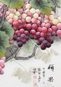 张琳 工笔斗方《硕果》 河北省美术家协会会员
